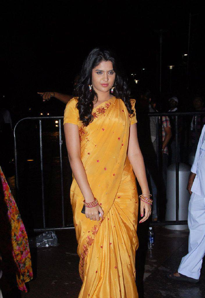 DEEKSHA SETH BEAUTIFUL LOOK IN SAREE AT SANTOSHAM AWARDS gallery pictures