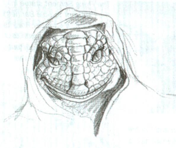 Extraterrestres Archivos Lacerta, 1ª parte