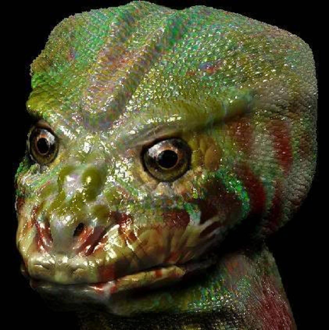 Entrevista a Alex collier sobre los Reptilianos
