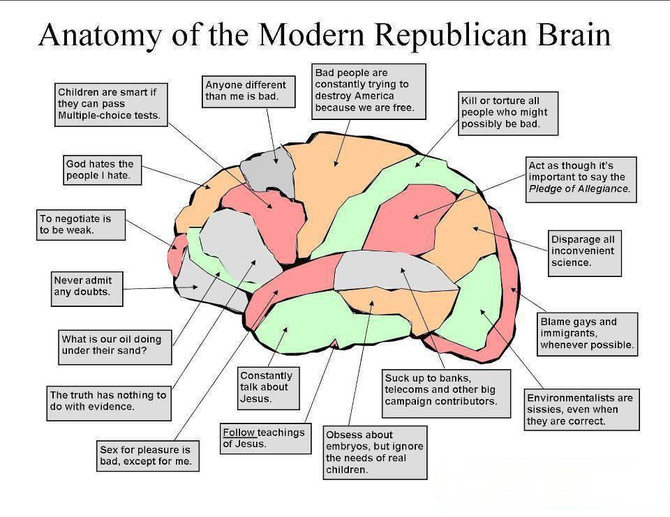 The Anatomy    Of The Modern    Republican Brain  Democratic Underground