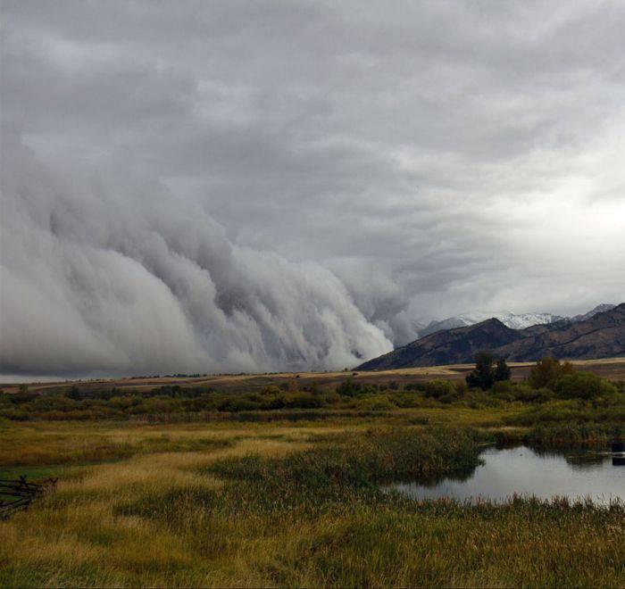 Chmury szelfowe 8