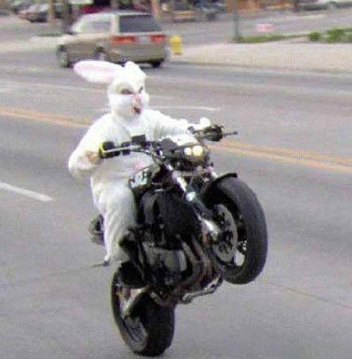 Święta Wielkanocne z przymrużeniem oka 19