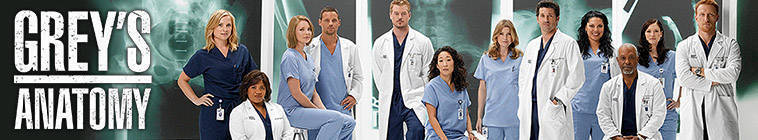 Greys Anatomy S10E14 HDTV XviD-FUM