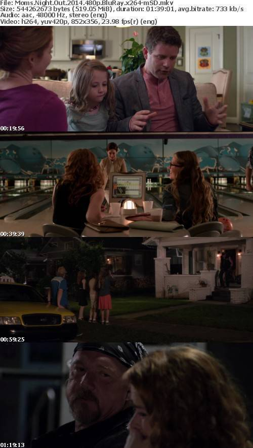 Moms Night Out 2014 480p BluRay x264-mSD