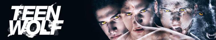 Teen Wolf S04E11 480p HDTV x264-mSD