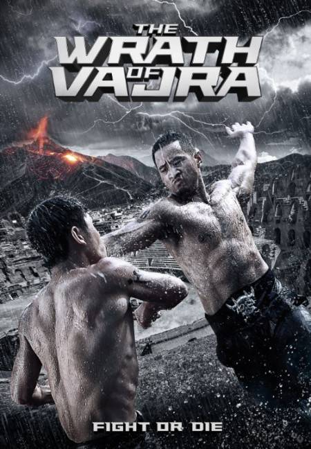 The Wrath of Vajra 2013 DVDRip XviD AC3-iFT
