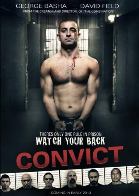 Convict 2014 DVDrip XVID AC3 ACAB