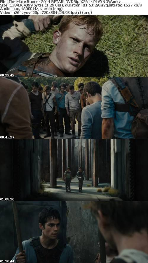 "The Maze Runner 2014 RETAIL DVDRip X264 â€"" PLAYNOW"