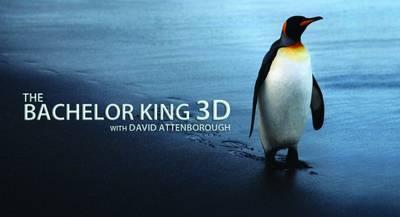 BSkyB - The Bachelor King (2012) PDTV x264 AAC-MVGroup