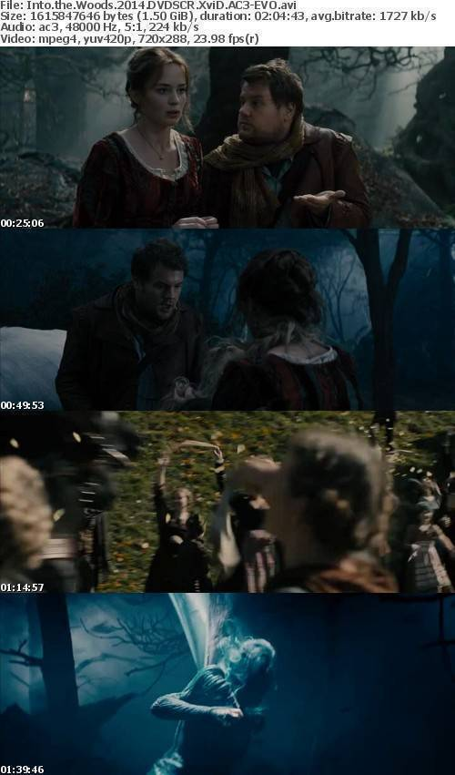 Into the Woods 2014 DVDSCR XviD AC3-EVO