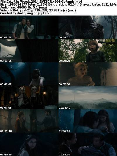 Into the Woods (2014) DVDSCR x264-GoPanda
