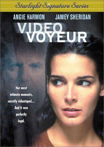 Video Voyeur (2002) DVDRip x264-LiebeIst mkv