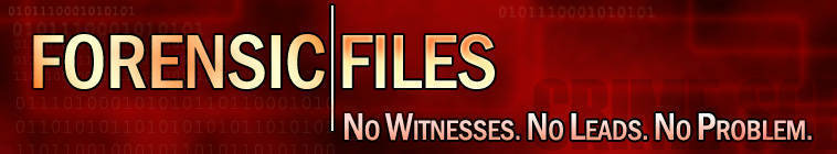 Forensic Files S09E09 Stick Em Up DSR x264-W4F