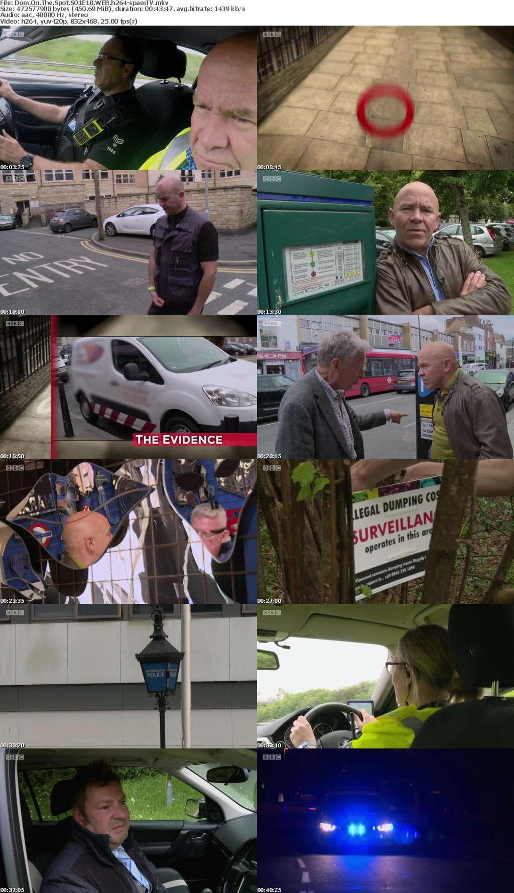 Dom On The Spot S01E10 WEB h264-spamTV