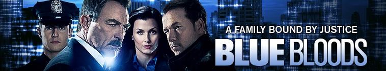Blue Bloods S06 NTSC DVDR