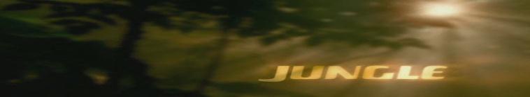 Jungle 2 Jungle 1997 720p HDTV x264-REGRET