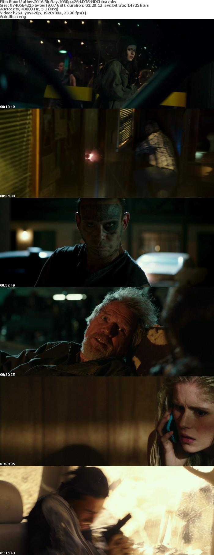 Blood Father 2016 BluRay 1080p x264 DTS-HDChina