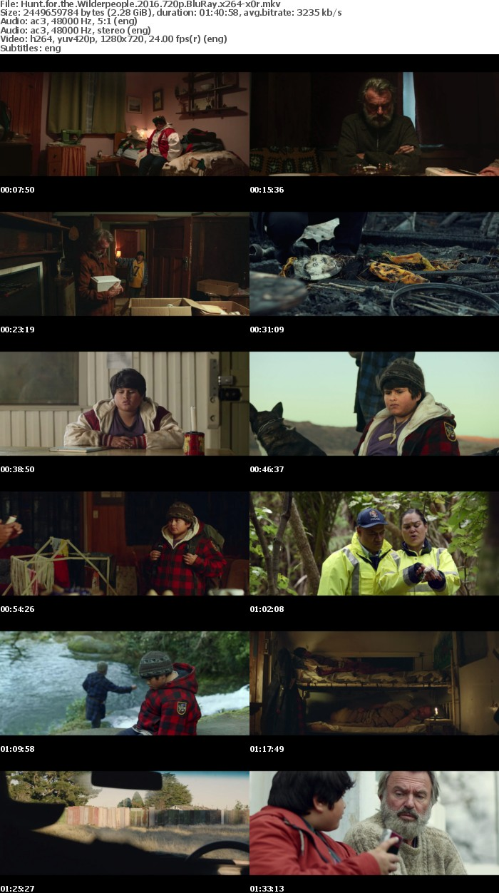 Hunt for the Wilderpeople 2016 720p BluRay x264-x0r