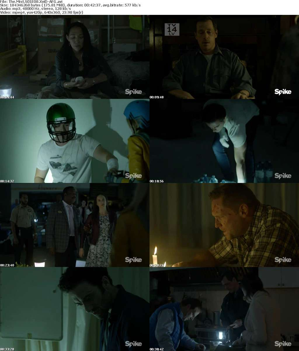 The Mist S01E08 XviD-AFG