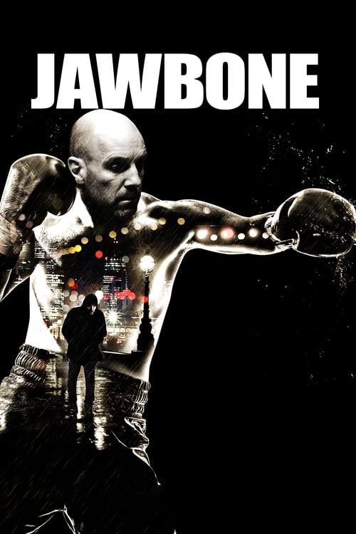 Jawbone German AC3 Dubbed BDRip x264-PsO
