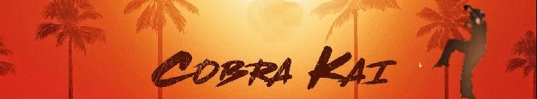 Cobra Kai S01E10 1080p WEB h264-CONVOY