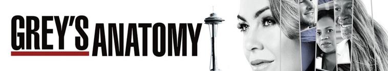Greys Anatomy S14E24 720p HDTV x264-KILLERS