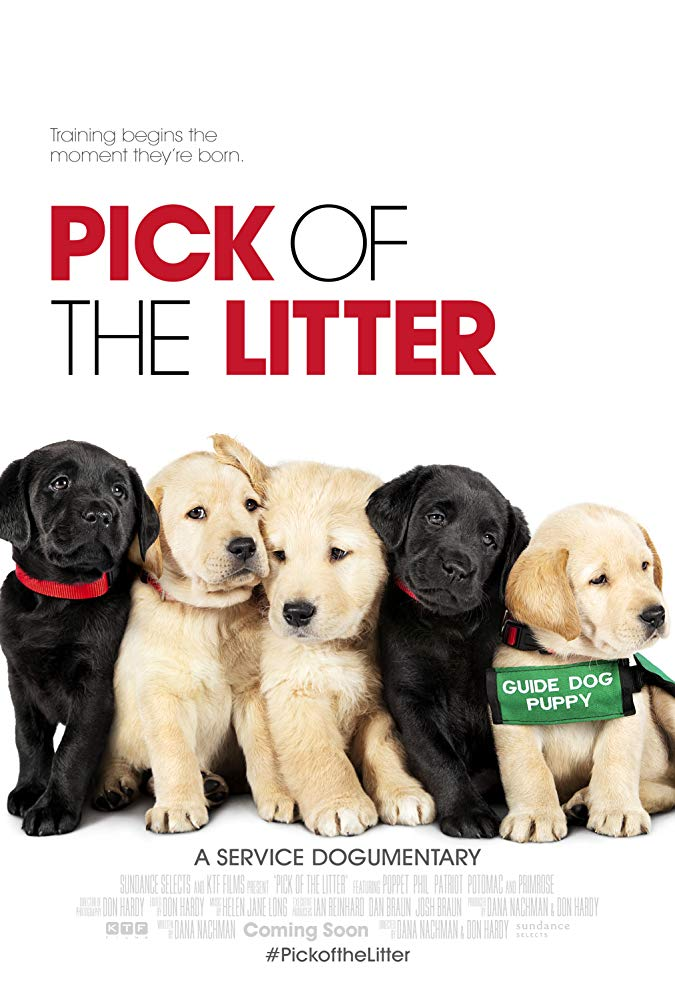 Pick of the Litter 2018 DOCU WEB-DL x264-FGT