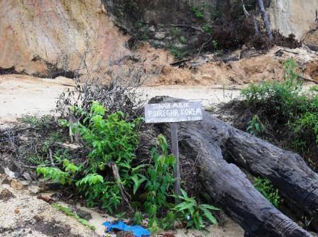 1143402510e8142dc5985b77ca1024daf53ba022 Bupati Madina Tidur: Pencuri Batumundom Dan Sikapas Jual Hutan Negara Laba Onas Ke Penadah Padangsidimpuan