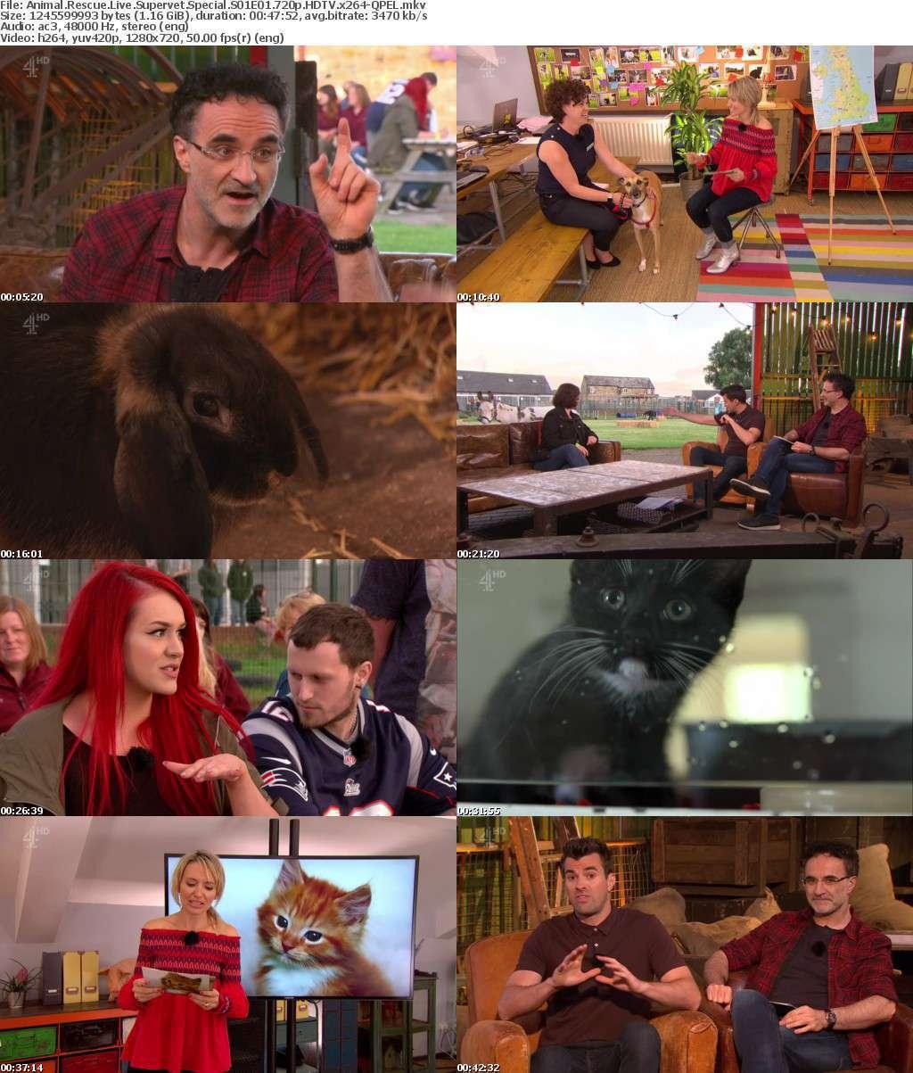 Animal Rescue Live Supervet Special S01E01 720p HDTV x264-QPEL