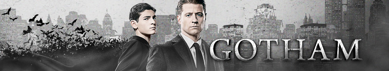Gotham S04E13 A Beautiful Darkness 720p WEB-DL DDP5 1 H 264