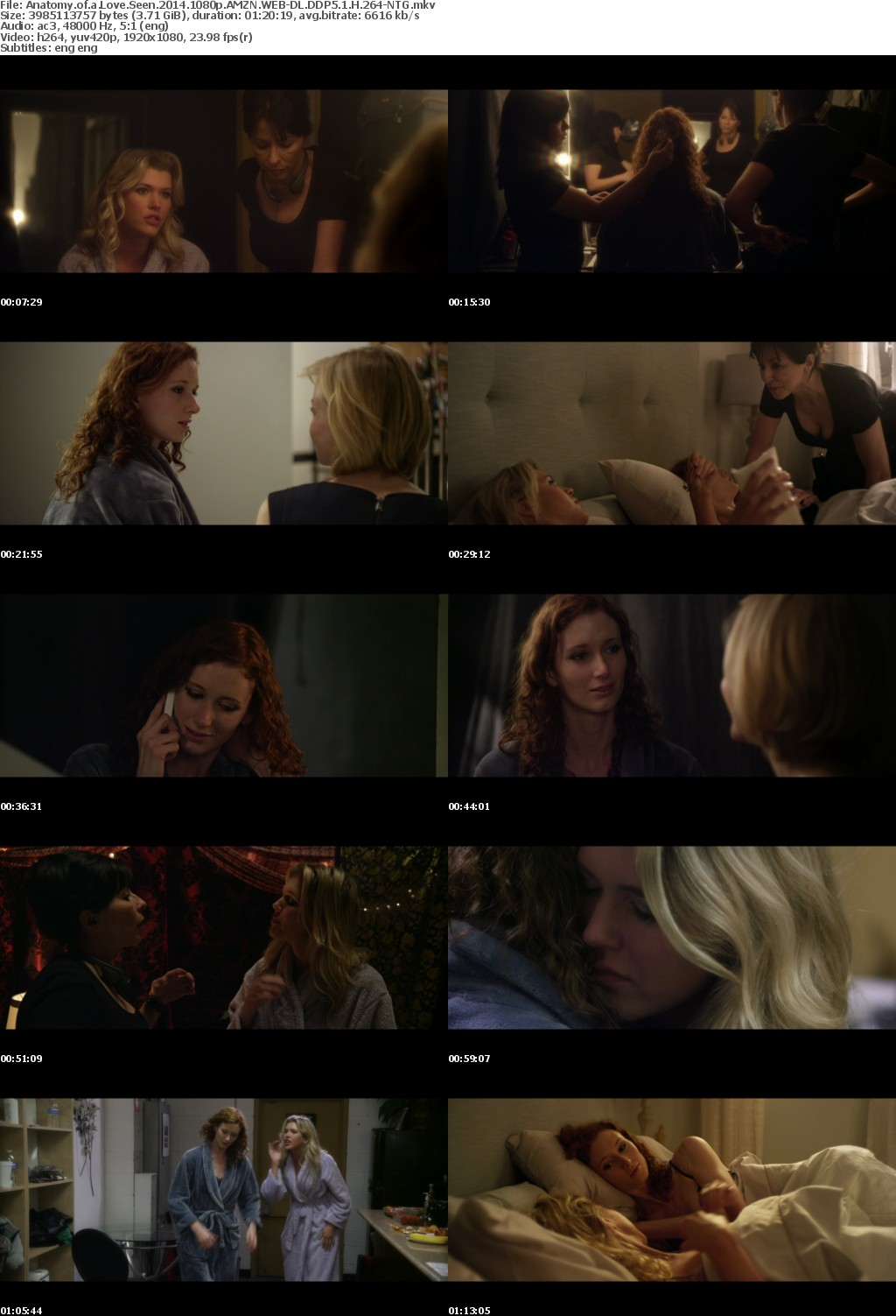 Anatomy of a Love Seen (2014) 1080p AMZN WEBRip DDP5.1 x264-NTG