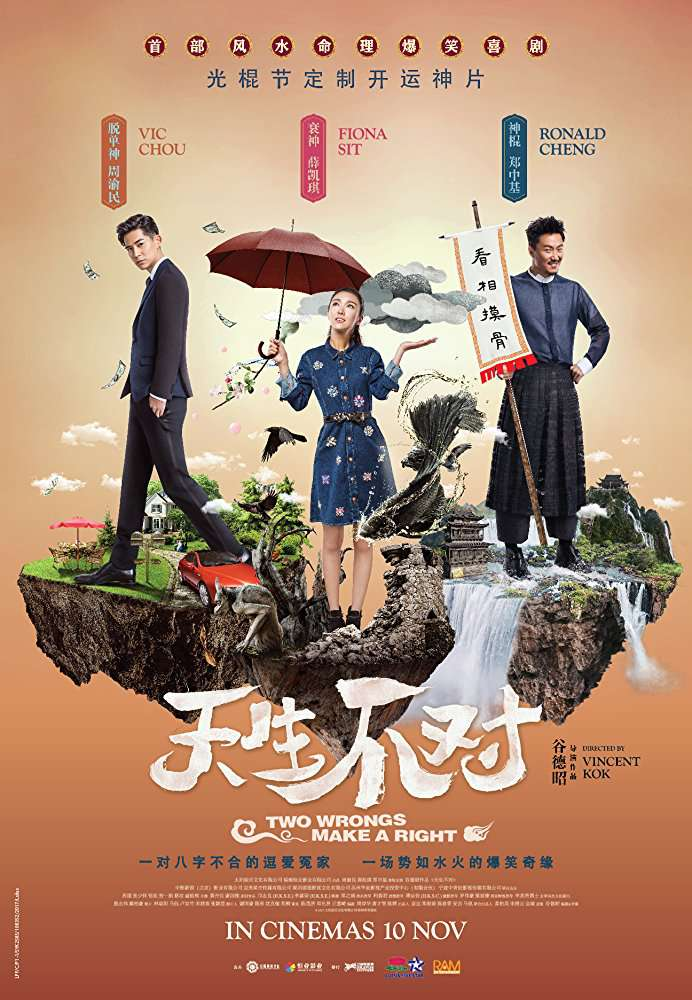 Two Wrongs Make a Right 2017 CHINESE 720p BluRay x264-WiKi
