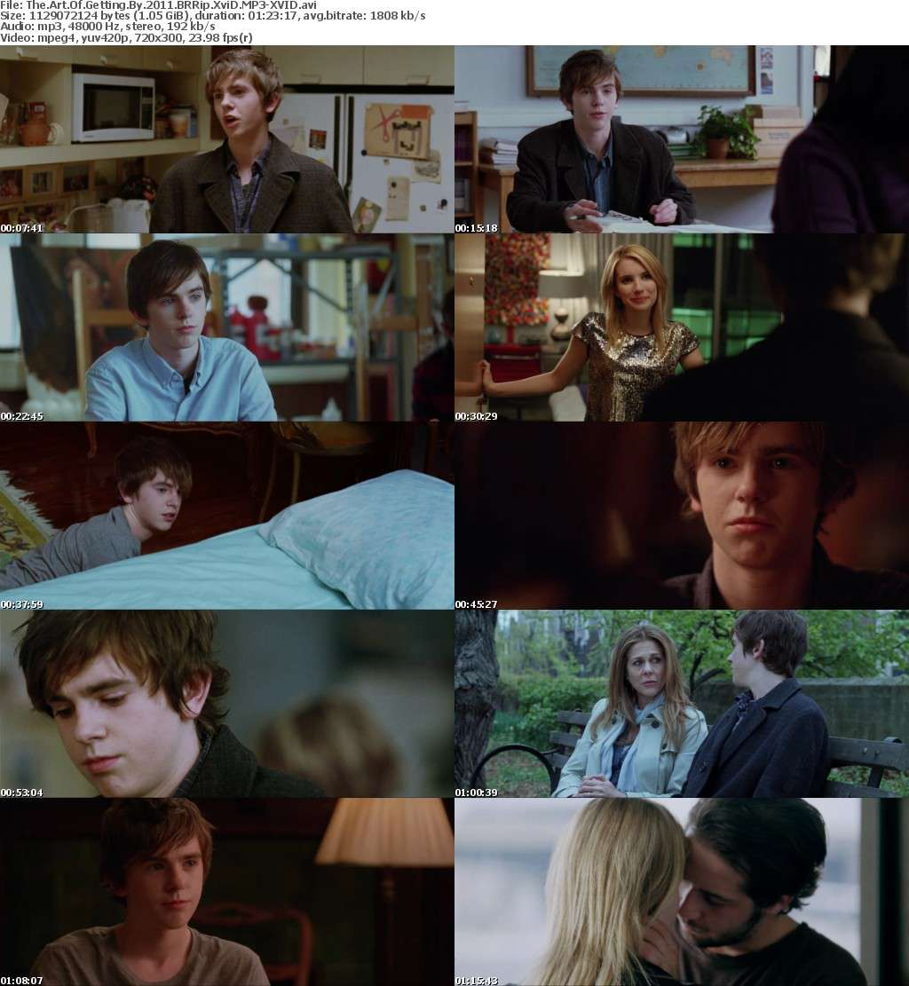The Art Of Getting By 2011 BRRip XviD MP3-XVID