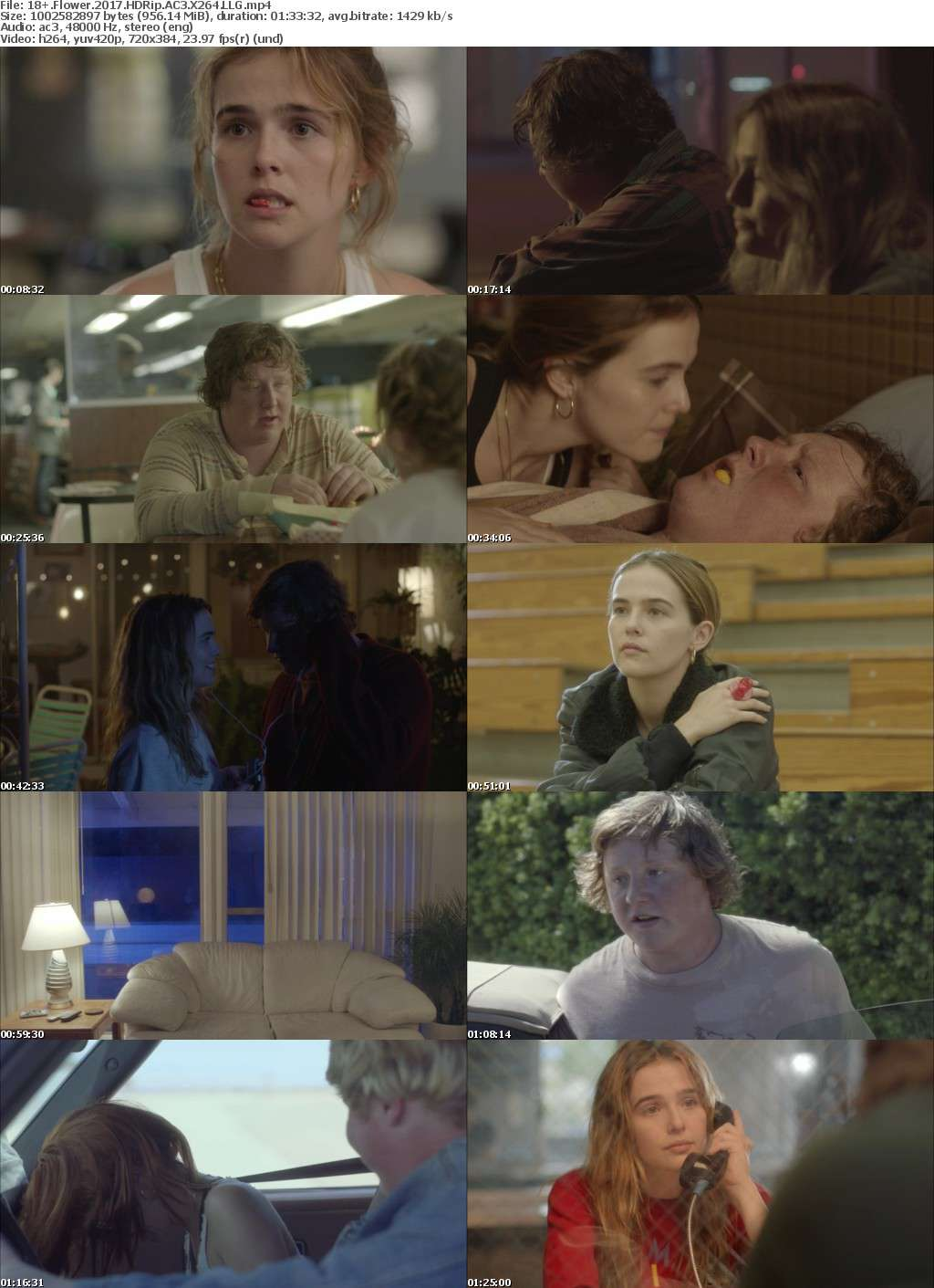 Flower (2017) HDRip AC3 X264 LLG