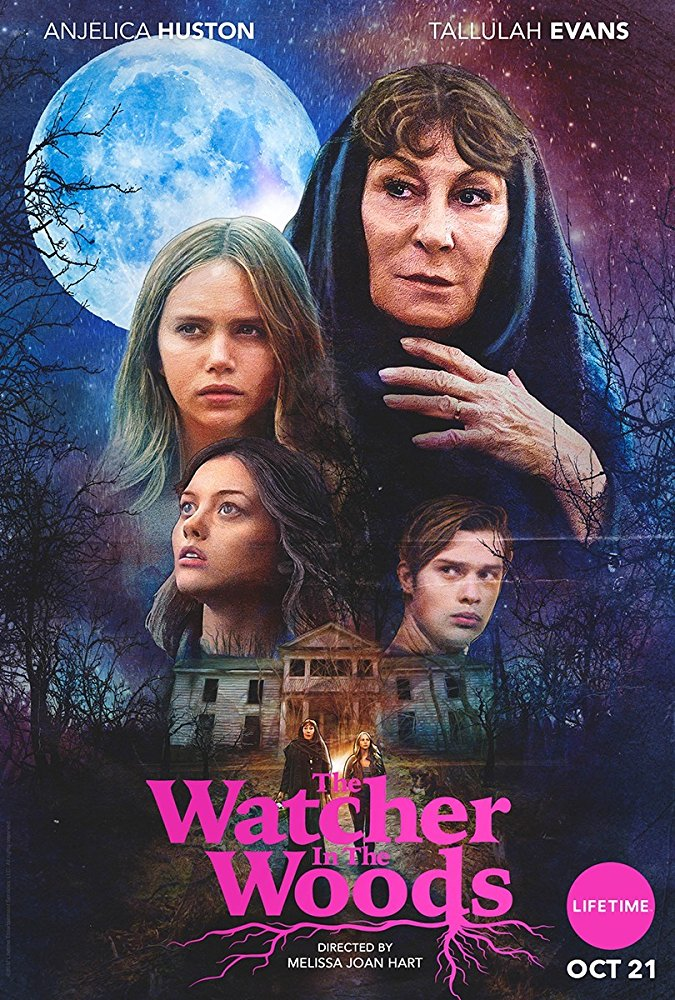 The Watcher in the Woods (2017) HDRip AC3 X264-CMRG