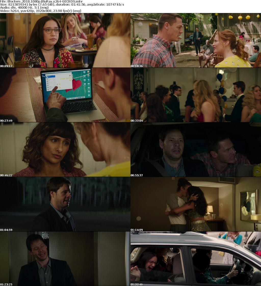Blockers 2018 1080p BluRay x264-GECKOS
