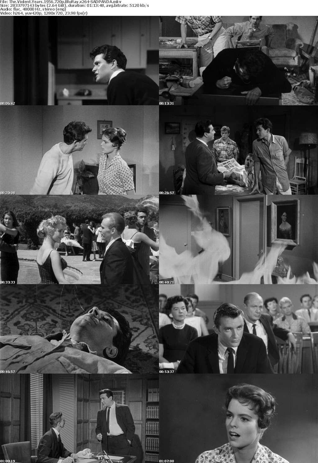 The Violent Years 1956 720p BluRay x264-SADPANDA
