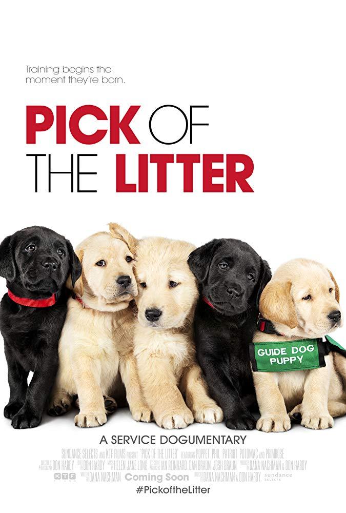 Pick of the Litter 2018 DOCU WEB-DL x264-FGT