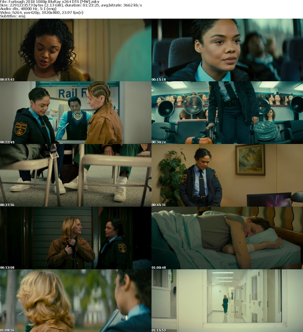 Furlough 2018 1080p BluRay x264 DTS MW