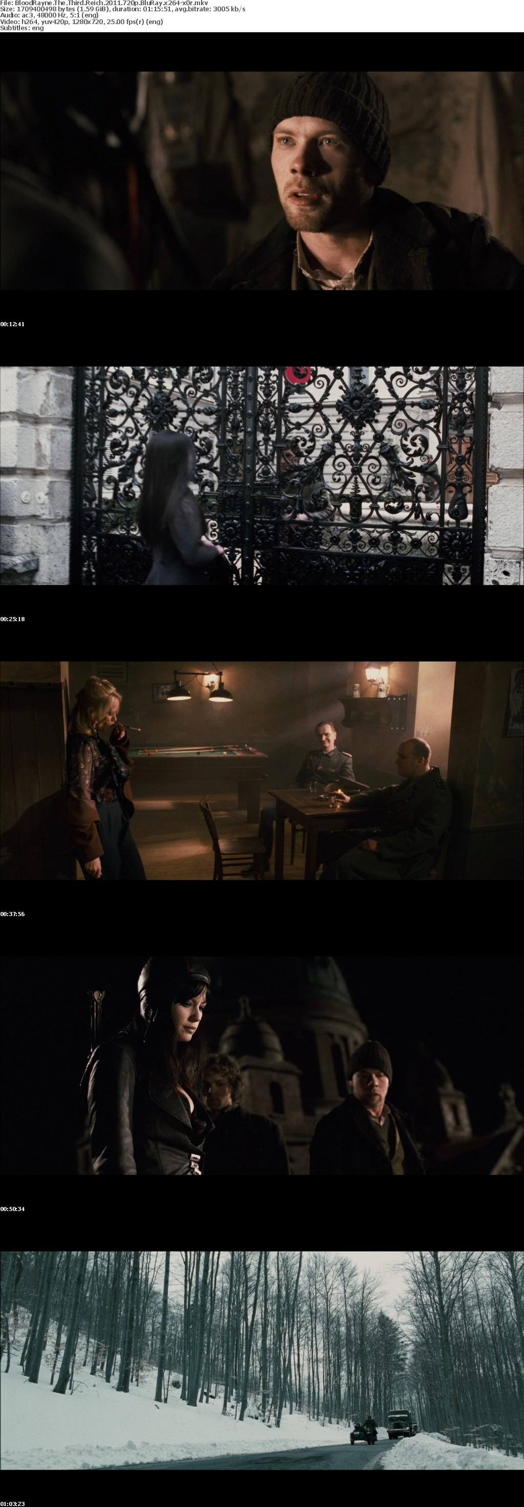BloodRayne The Third Reich 2011 720p BluRay x264-x0r