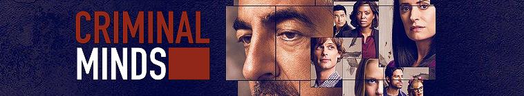 Criminal Minds S14E10 1080p WEB H264-AMCON
