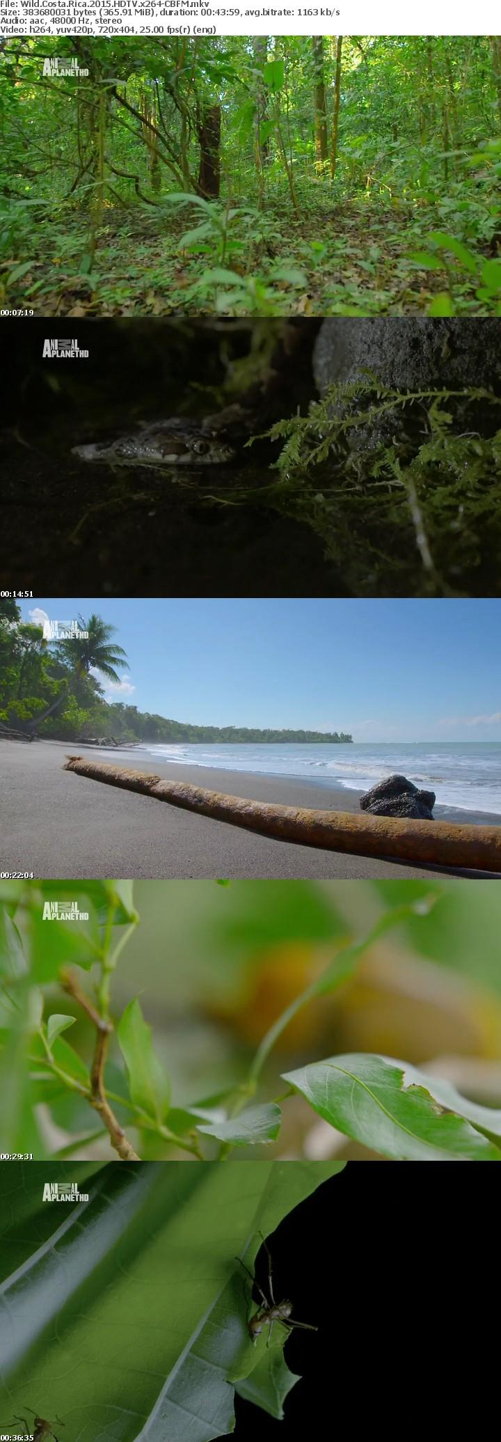Wild Costa Rica 2015 HDTV x264-CBFM