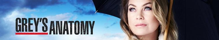 Greys Anatomy S15E13 720p HDTV x264-KILLERS
