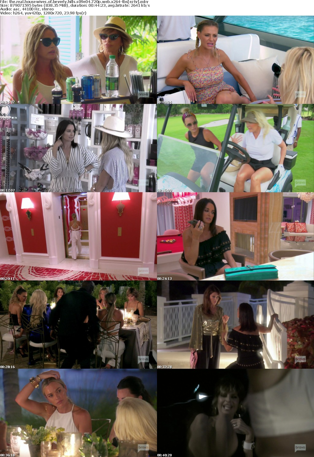 The Real Housewives of Beverly Hills S09E04 720p WEB x264-TBS