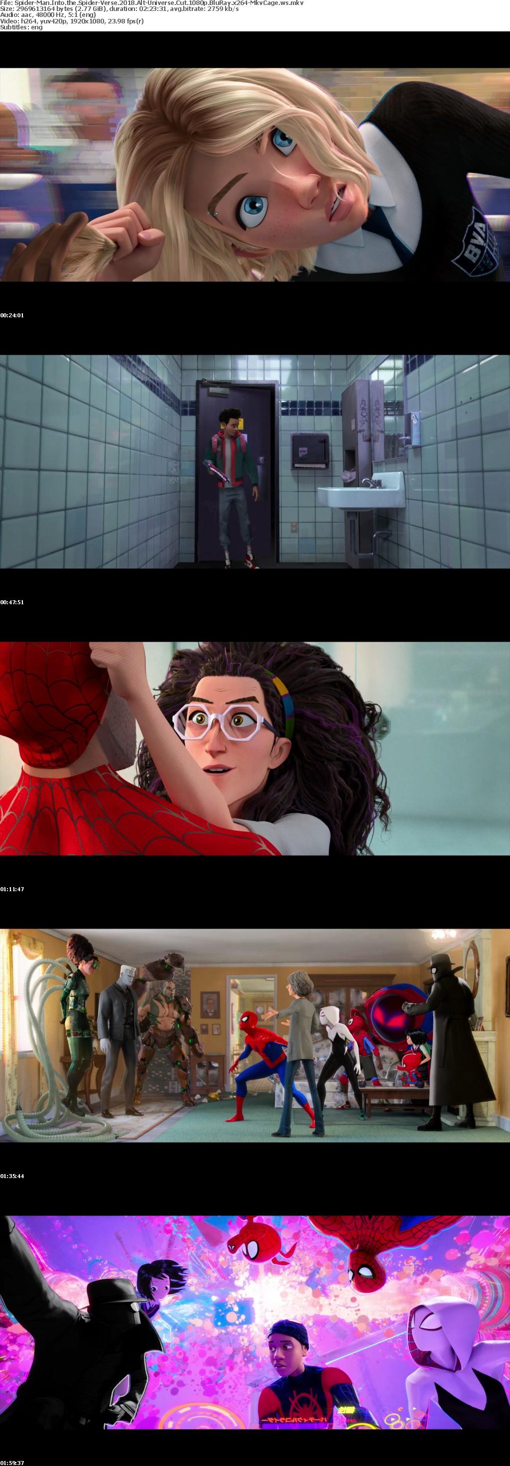 Spider-Man Into the Spider-Verse 2018 Alt-Universe Cut 1080p BluRay x264-MkvCage
