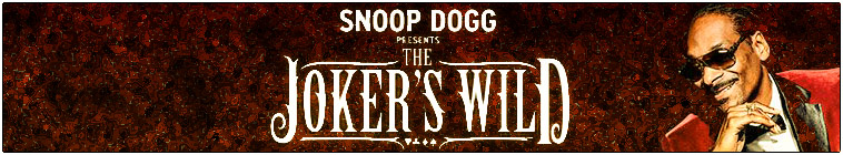 Snoop Dogg Presents The Jokers Wild S02E19 1080p WEB x264-TBS