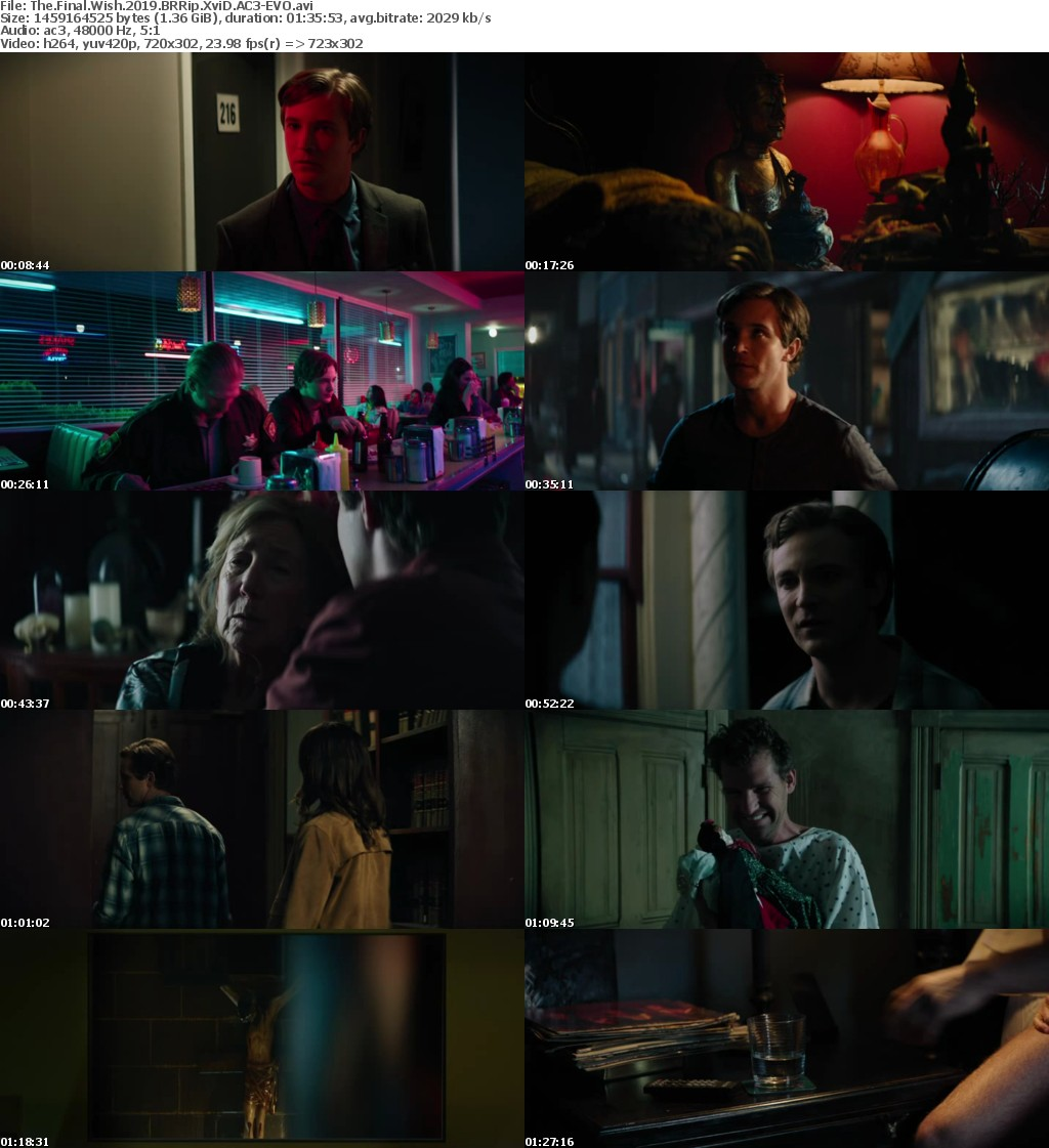 The Final Wish (2019) BRRip XviD AC3-EVO