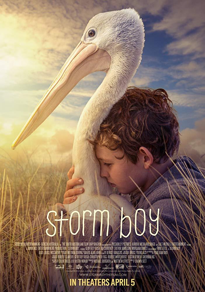 Storm Boy 2019 HDRip AC3 x264-CMRG