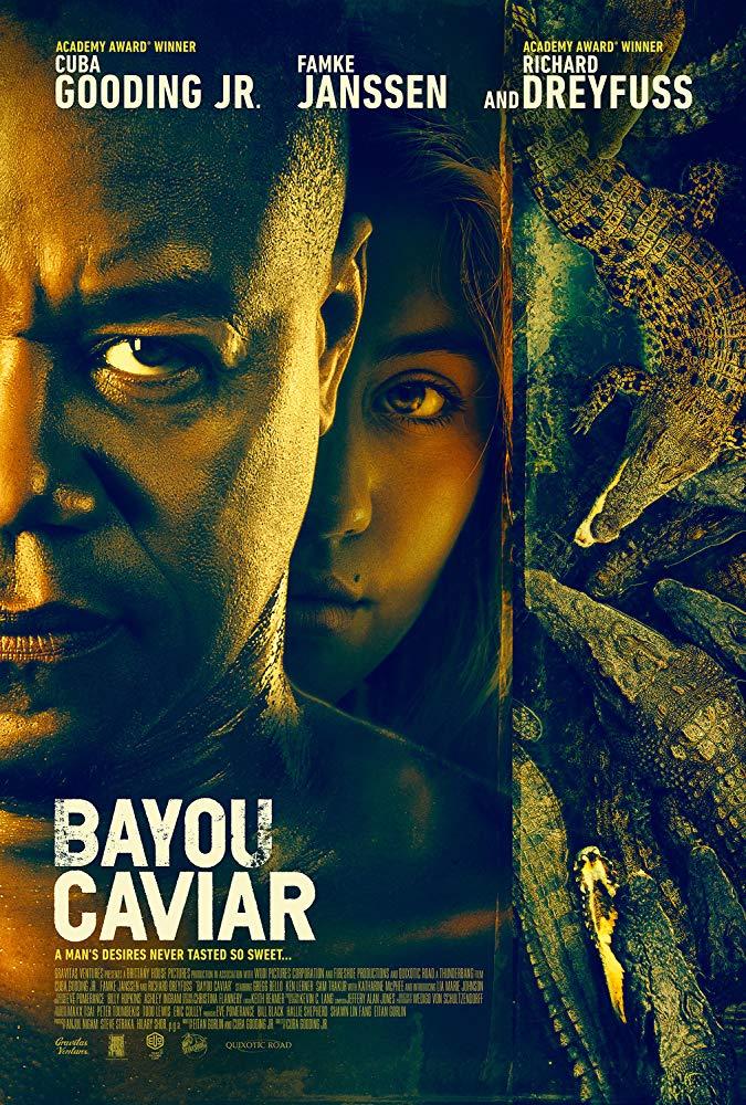 Bayou Caviar 2018 BluRay 10Bit 1080p DD5 1 H265-d3g