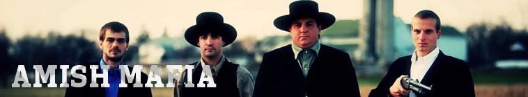 Amish Mafia S01E04 Fall From Grace INTERNAL 480p x264-mSD